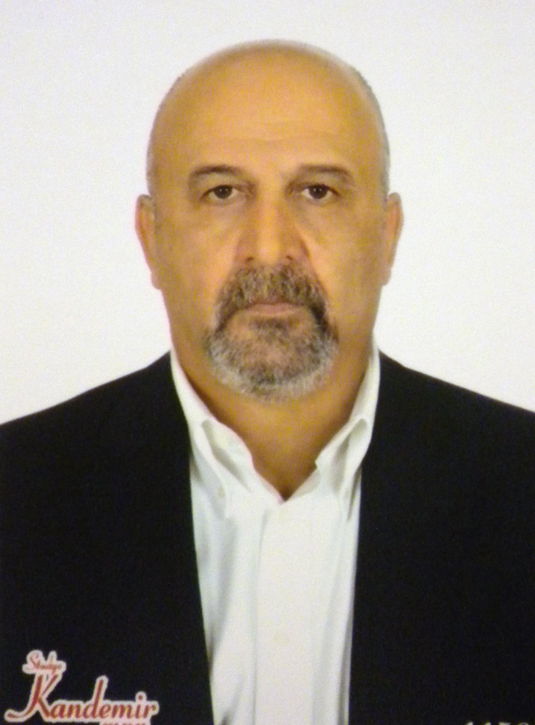 What Is Spine Stabilization >> Ali Fahir Ozer   Editor   SciTechnol   Journal of Spine & Neuros