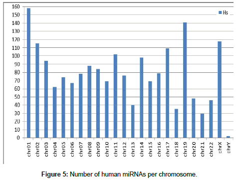 applied-bioinformatics-Number-chromosome