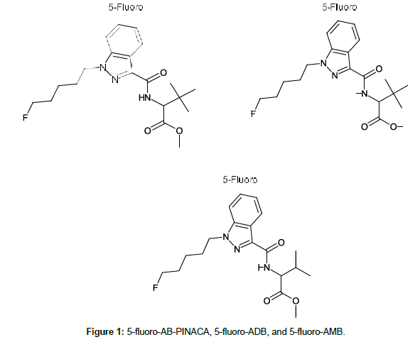 Identification of Synthetic Cannabinoid 5-fluoro-ADB in Human