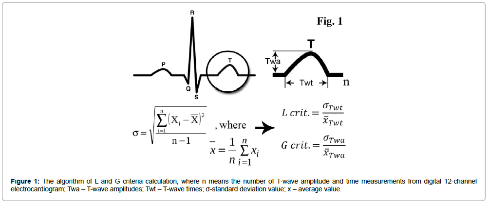 international-cardiovascular-wave-amplitudes