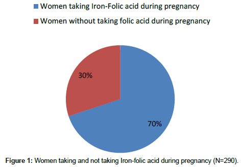 medical-biotechnology-Iron-folic
