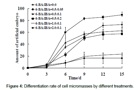 plant-physiology-Differentiation-rate