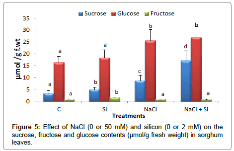 plant-physiology-glucose-contents