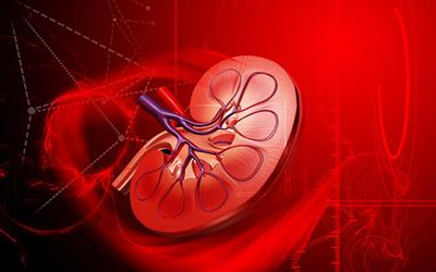 Renal Transplant for Patients on Long-term dialysis (20 or more years) at our Center