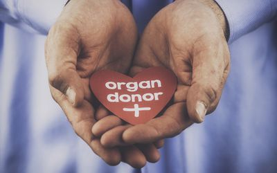 Organ Donation Attitudes and Practices Among Older Adults Participating in Evidence-Based Health Programs