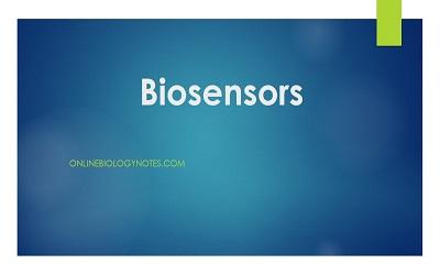 Bio Electrodes and Biosensors