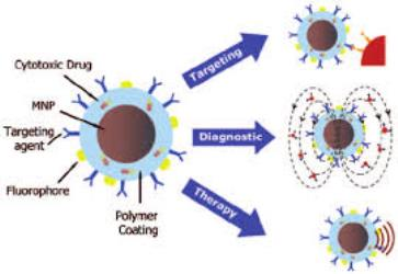 General Review on the Properties and Applications of Magnetic Nanoparticles in Biomedicine