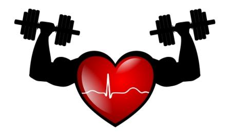 Physical Fitness Study in Children with Previous Surgery for Congenital Heart Disease