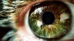 Strategies to Direct Eye Conditions to Avoid Vision Impairment