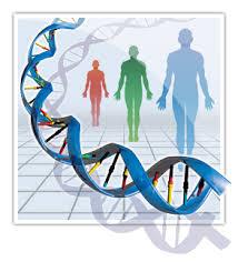 Human Genetic variation