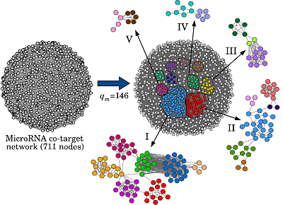 Communities of Dense Weighted Networks