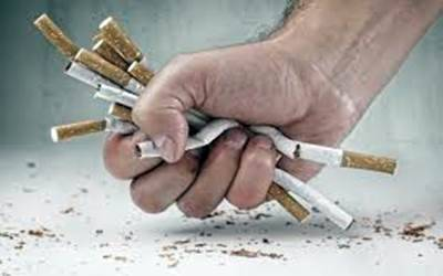 Knowledge Level of Kocaeli�s Population Regarding Smoking and Smoking Cessation