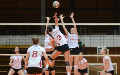 High-Density Lipoprotein Cholesterol Subfractions in Collegiate Female Volleyball Players