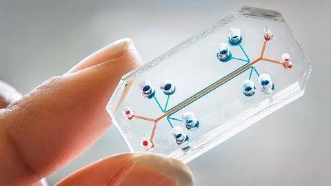 Market Analysis - Microfluidics 2020