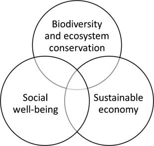 Biodiversity is Environmental Management