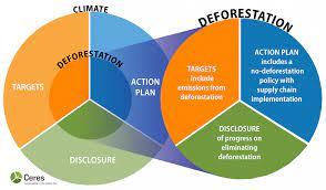 Biodiversity and Deforestation environmental Businesses