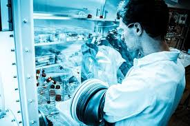 2020 Market Analysis of Chemical Engineering and Catalysis