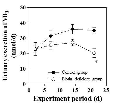 Effects of Biotin Deficiency on the Urinary Excretion of B-Group Vitamins in Mice