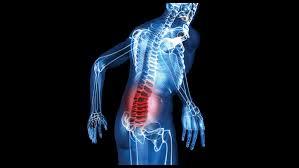 Work-Related Musculoskeletal Disorders & Ergonomics
