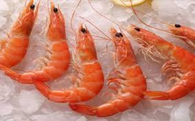 Comparison of Flesh Quality of Deep Water Pink Shrimp (Parapenaeus longirostris, Lucas 1846) from Marmara, Aegean and Mediterranean Seas in Turkey