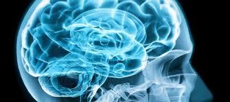 Scientific Psychiatry or Forensic Psychiatry