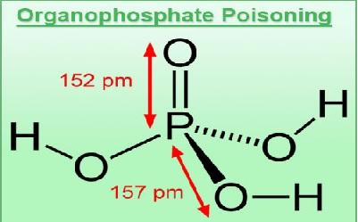 Organophosphorus Compound Poisoning- Demographic Profile in Gandhinagar, Gujarat