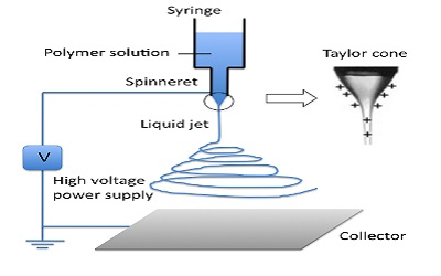 Effect of Electrospinning Parameters on Fiber Morphology of Tissue Engineering Scaffolds: A Review