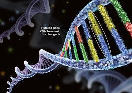 A Case of MEN2A Associated with a C634R De-novo Mutation of the RET Gene at Algiers