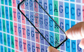 Market Analysis of Glycobiology and Glycochemistry 2020
