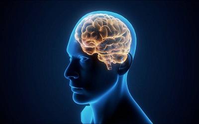 Genetic Brain Disorders