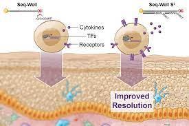 Evaluate RNA Sequences