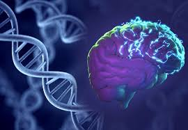Interface Between Bioinformatics and Virology