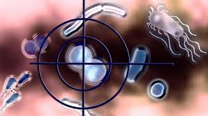 Market Analysis for Immunology 2020: Conference on Immunology, Immune Diseases and Therapies