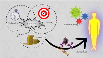 Electrochemical Biosensor for the Detection of Viruses and Possibly Covid-19