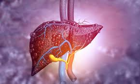 Recent Research on Liver Diseases in Singapore:
