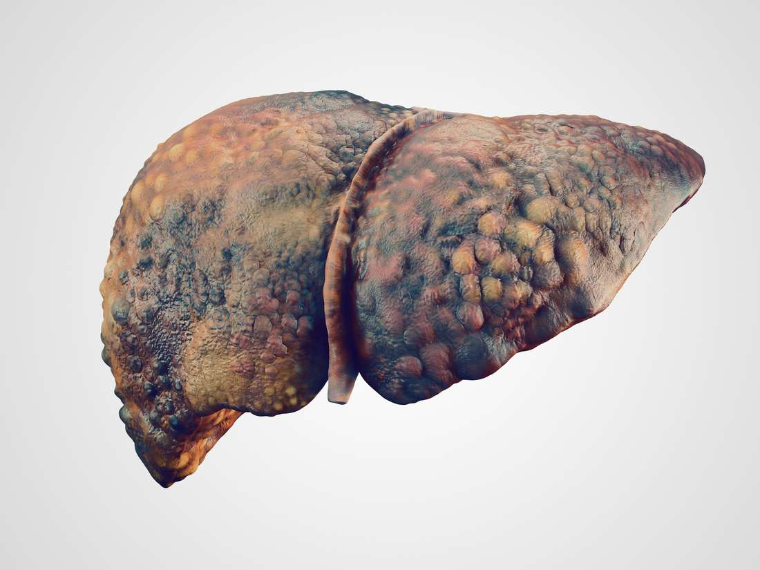 Short Communication on Liver