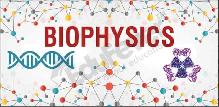 Implementation of Developmental  Biophysics in Sciences