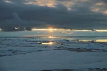 Toward an Adaptive Sampling Strategy to Understand the Sensitivity of Biogeochemical Province Boundaries to Climate Change