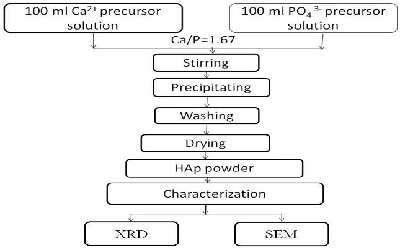 Study of the Dependency of pH Values on HAp Synthesis