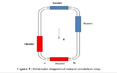 Investigation on Heat Transfer Behaviour of Molten Salt Natural Circulation Loop using Numerical Simulations