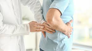 Nephrology Concerns the Diagnosis for Kidney Diseases