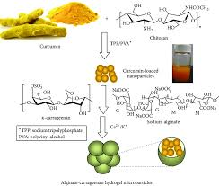 Curcumin Loaded Solid Lipid Nanoparticles Enhanced Efficacy in Vascular Dementia Against Homocysteine Induced Toxicity
