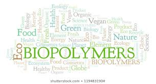 2020 Young Scientist Award of Biopolymers & Bioplastics Conference