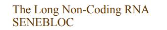 The Long Non-Coding RNA SENEBLOC