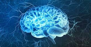 Endoscopic Neurosurgery