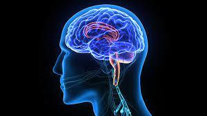 Neurosurgery for mental disorder