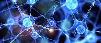 Neurosurgical treatment of obsessive-compulsive disorder