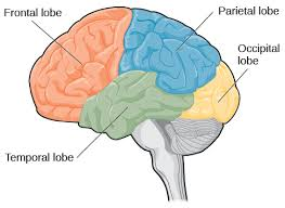 Neurosurgery in Parkinson's disease: the doctor is happy, the patient less so?