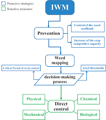 Quality Response of Oats Avena sativa L. to Integrated Weed  Management