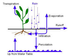 Definition and Purpose of  Percolation of Soil